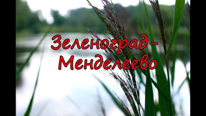 Поход по маркированной тропе Зеленоград—Менделеево