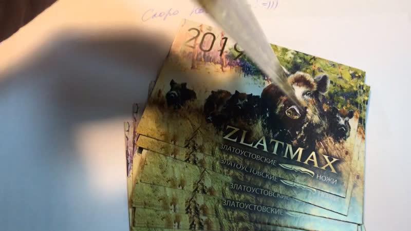 Календари 2019 Кабанчики