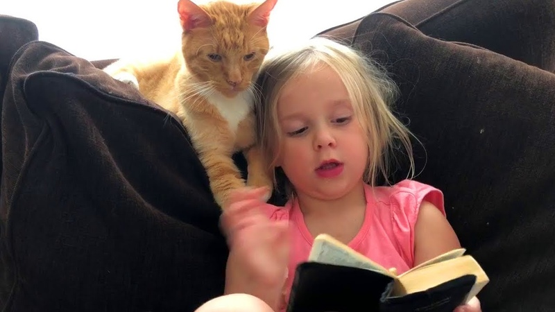 Little Girls 👧Loves Her Cat 🐱More Than Anything 😊赤ちゃん愛の猫