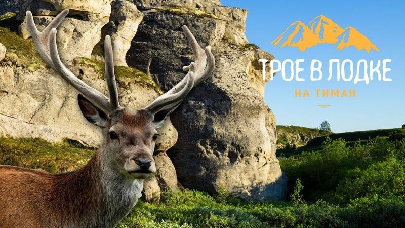 СЕВЕРНЫЙ ТИМАН (ч.2) | Новые трофеи | Водопад Падун | Путь в Каменный город |Рыбалка щука хариус|НАО