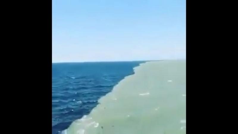 Место, где встречаются Атлантический и Тихий океан. Их воды соприкасаются, но не смешиваются.