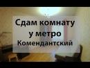 Снять комнату у метро Комендантский проспект Богатырский 56