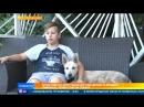 В Ростове мальчик сам делает и продает лимонад, чтобы спасти собаку