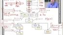Загрузка и дерево процессов Linux и Windows. Параллельные программы: процессы, нити и волокна