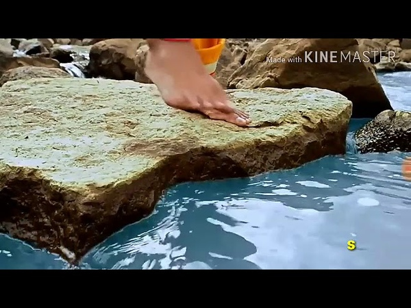 Man mohna mora krishna song with lyrics (मन मोहना मौरा कृष्णा)