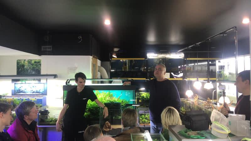 СтрЕЕМ Мастер класс по запуску аквариума Aquael