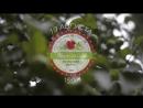 Яблочный спас тизер