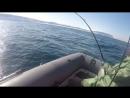 Открытие сезона Тресковой рыбалки. Баренцево море.На борту судна ''Валерия'' я и мой матрос Доктор Петров