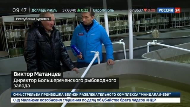 Новости на Россия 24 • Популяция под угрозой на Байкале ограничили вылов омуля