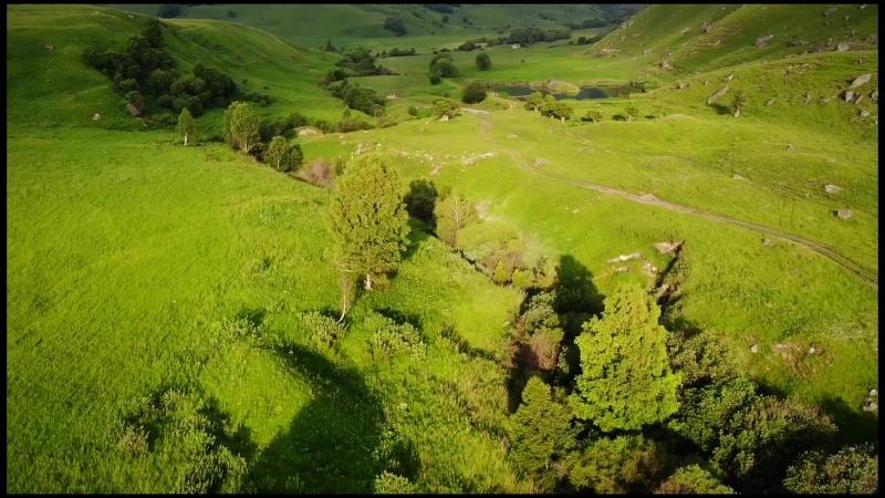IntoTheBus flyover Location