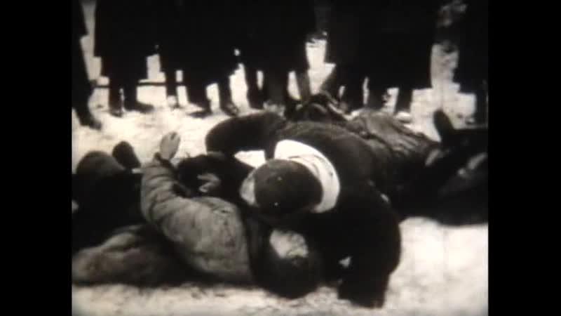 6. Разгром немецко-фашистских войск под Москвой