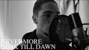 Never More - Dusk Till Dawn (Zayn ft. Sia)