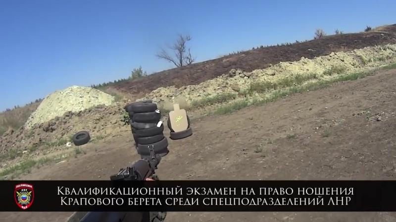 Спецназ ЛНР «Беркут», СОБР и Краповые береты