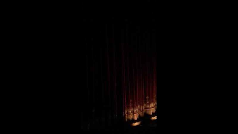 Премьера балета «Приключения Винни Пуха»
