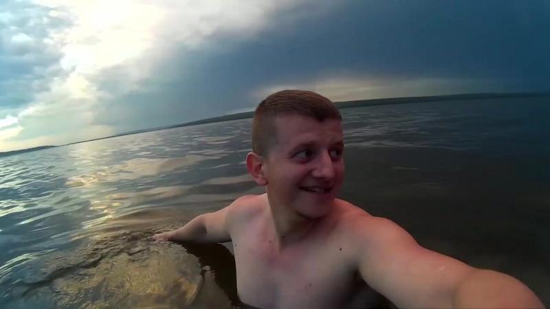 Реальные кабаны Заречный Пенза Сурское водохранилище Июнь 2018 года