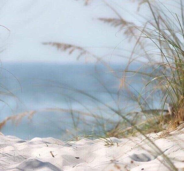 Когда всё идёт не так, когда ощущаешь потребность быть в гармонии с миром, замри на мгновение, закрой глаза, и слушай Мир.