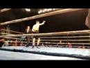 Видео крутого и быстрого нокаута небитого казахстанца из команды Головкина в титульном бою в США