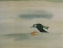 Птичий праздник.Музыка А.Вивальди.1976 г