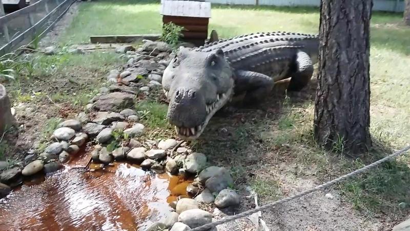 крокодил-дил-дил