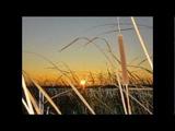 Алёна Скок - Видеоряд песен