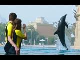 30% скидка на отдых и развлечения на курорте Атлантис, Дубай