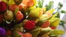 Тюльпаны из гофрированной бумаги и конфет. Часть 2.