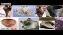 Древние изделия из камня изготовленные по утерянным технологиям