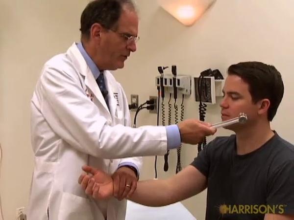 Sensory System - The Precise Neurological Exam