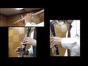 マクロスF「アイモ」Full Cover(For Trio, Flute,Clarinet,Bass Clarinet)