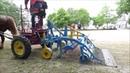 Desherbage mécanique à cheval