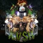 Tropkillaz альбом Kv$h