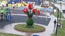 Поджог зеленой скульптуры в виде цветка на детской площадке в Томилино РИАМО в Люберцах