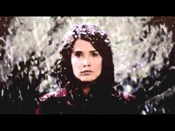Scrisoare pe zapada-Madalina Amon