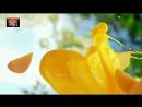 Deepika Padukone for Nestlé Fruita Vitals