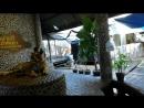 Зверинец В саду многомиллионных камней Паттайя 17 05 18г