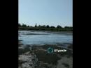 В Брюховецком районе исчезла река