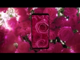 LG V30_ Raspberry Rose Edition