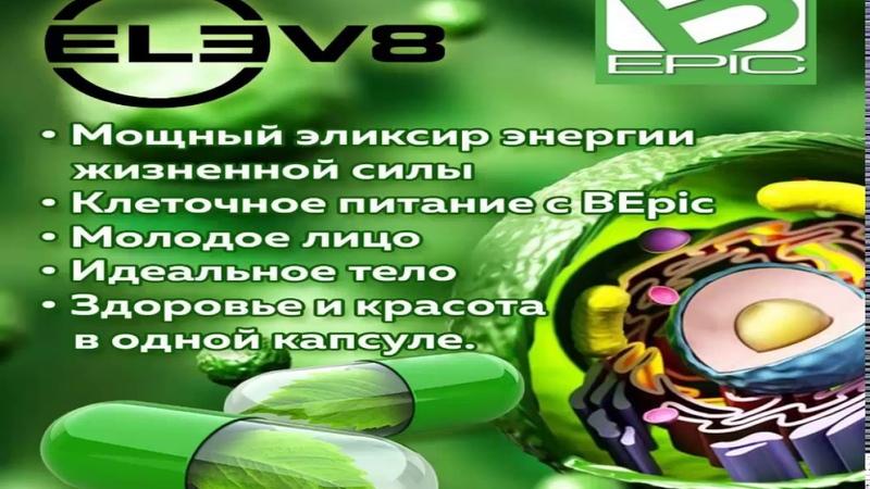 Почему ELEV8 имеет такую бешеную популярность?