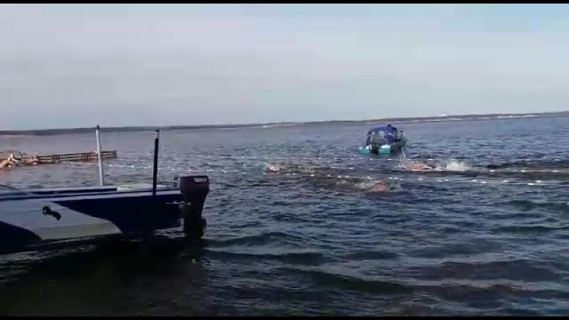 Эстафета по холодовому плаванию на Открытом турнире в г. Чебоксары 5 мая 2018г.
