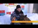 Из студентов в полицейские Во Владимире прошла акция Студенческий десант
