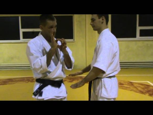 Бушинкан Дзю Дзюцу - старое ката болевых на пальцы. (Bushinkan Jiu Jitsu)