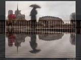 Sara Jane Morris ~ FRAGILE (Cover)
