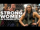 Powerlifting Motivation - Stefi Cohen