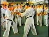 Кекусинкай каратэ. Семинар под руководством Ника Да Косты. г. Самара 1994 г. Час