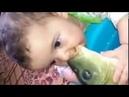 РЫБИЙ ПОЦЕЛУЙ. Ребенок и Карп\Fish Kiss. Child and carp.