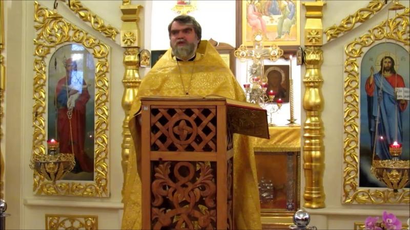 Проповедь протоиерея Романа Гуцу в Неделю 26-ю по Пятидесятнице. Лк. X25-37 (зач. 53)