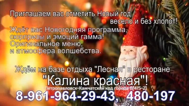VID_24110105_070438_605.mp4