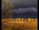 Чернобыльские джунгли. 20 лет без человека. Часть 1 Пролог-spem--scscscrp