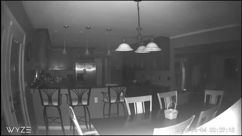 """..?..14 апреля..Мичиган..MurdruM68 -...мой друг показал мне это видео Вчера вечером. Это было зафиксировано на его"""" мудрой до"""