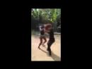 Peleas callejera mujeres peliando por hombre con sida YouTube